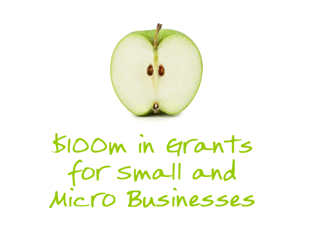4-3_100m in grants for small and micro businesses