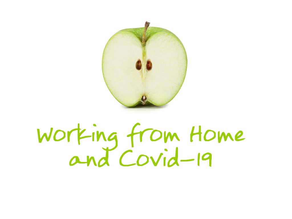 4-3_Working_From_Home_Covid_19