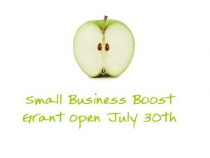 Queensland Government – Small Business Boost Grant