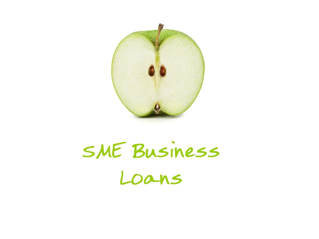 Federal government SME Business Loans