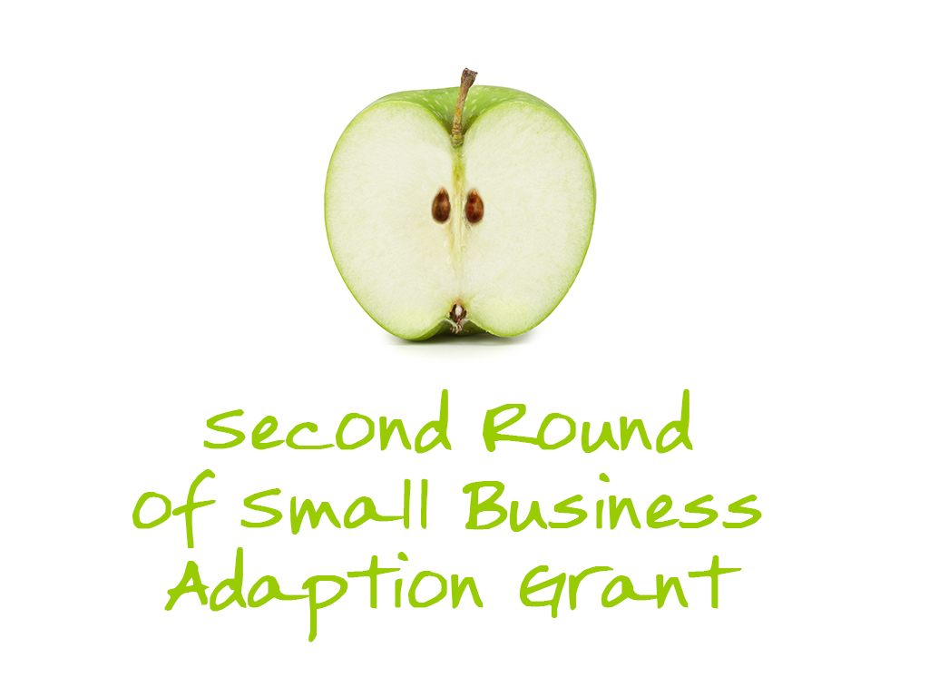 Second Round Business adaption grant title